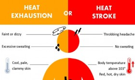Heat stroke or heat exhaustion? Know the symptoms