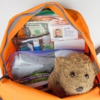 "Prepare a Wildfire Evacuation Plan and Kit or ""Go Bag"""