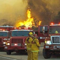 What is CAL FIRE?